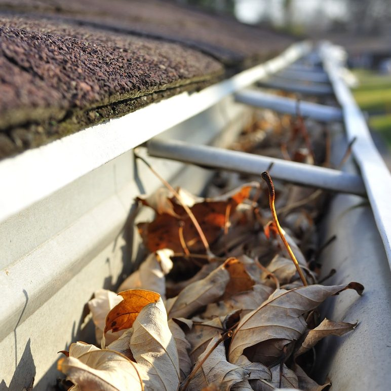 gutter-cleaning-1030x772