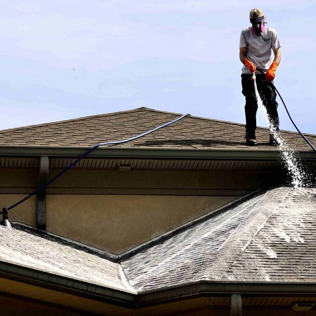 roofsoftwashingJPG